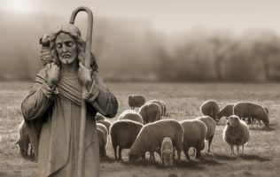 Pastuszkowie ze snu powstali