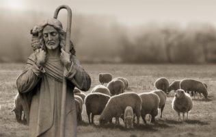 Piosenka pasterzy